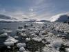 thumbs antarkticheskij poluostrov 102 Антарктический полуостров