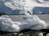 thumbs antarkticheskij poluostrov 103 Антарктический полуостров
