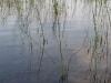 thumbs baza gidrosamoletov na kopanskom ozere 02 База гидросамолетов на Копанском озере