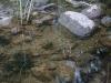 thumbs baza gidrosamoletov na kopanskom ozere 05 База гидросамолетов на Копанском озере