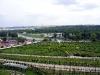 Ботанический сад в Праге. Виноградники