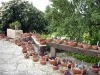 thumbs botanicheskij sad v prage 10 Ботанический сад в Праге