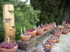 thumbs botanicheskij sad v prage 11 Ботанический сад в Праге