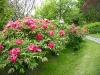 thumbs botanicheskij sad v prage 14 Ботанический сад в Праге