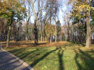 1165  300x225 mariinskij park 04 Мариинский парк