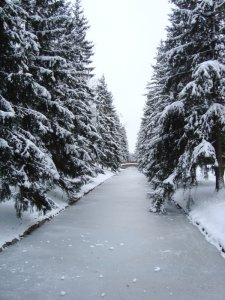2125  225x300 ekaterininskij park 01 Екатерининский парк
