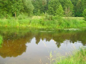 289  300x225 reka titovka06 Река Титовка