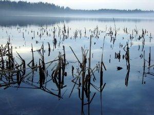 3619  300x225 vodohranilishe na reke suma 04 Водохранилище на реке Сума