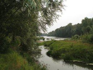 988  300x225 reka desna 10 Река Десна