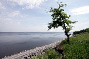 9990  300x225 kremenchugskoe vodohranilische 03 Кременчугское водохранилище (Светловодск)