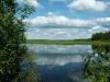 Река Большой Юг в Дмитриевском