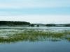 Река Большой  в Дмитриевском