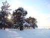 Финский залив (Липово). Снежные торосы.