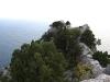 Гора Кошка. На вершине