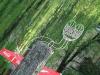thumbs gorodskaya skulptura uzhgorod 04 Городская скульптура Ужгород