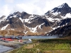 thumbs grytviken 10 Грютвикен