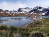 thumbs grytviken 15 Грютвикен
