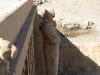 Храм царицы Хатшепсут. Статуя фараона