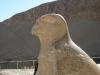 Храм царицы Хатшепсут. Статуя бога Гора