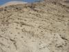 thumbs iudejskaya pustynya 08 Иудейская пустыня