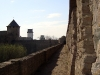 thumbs ivangorodskaya krepost 05 Ивангородская крепость