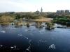 Ивангородская крепость. Панорама реки Нарва