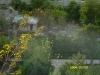 Каменец-Подольская крепость. Бабочки
