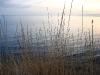 Кара-Даг. Вид на море от биостанции