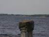 thumbs kievskoe more 14 Киевское море