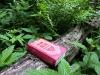 Китаево. Забытый в лесу молитвенник