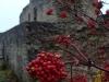 thumbs koporskaya krepost 19 Копорская крепость