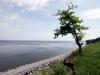 thumbs kremenchugskoe vodohranilische 03 Кременчугское водохранилище (Светловодск)