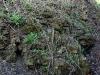 thumbs krepost yam 05 Крепость Ям