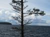 thumbs ladozhskoe ozero 16 Ладожское озеро
