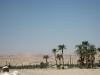 thumbs luksorskij hram 01 Луксорский храм