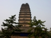 thumbs malaya pagoda dikih gusej 03 Малая пагода диких гусей