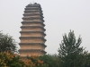 thumbs malaya pagoda dikih gusej 10 Малая пагода диких гусей
