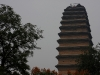 thumbs malaya pagoda dikih gusej 15 Малая пагода диких гусей