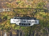 thumbs mariinskij park 01 Мариинский парк