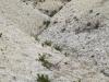 thumbs melovye gory 14 Меловые горы