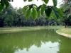 thumbs mihajlovskij park 14 Михайловский сад