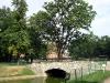 thumbs mihajlovskij park 15 Михайловский сад