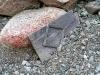 thumbs mramornoe ushhele 12 Мраморное ущелье