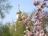 Набережная В.И. Ленина. Храм Святого Николая на Монастырском острове