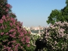 Национальный ботанический сад имени Н.Н. Гришко
