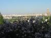 thumbs nacionalnyj botanicheskij sad imeni n n grishko 11 Национальный ботанический сад имени Н.Н. Гришко