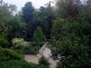thumbs nikitskij botanicheskij sad 149 Никитский ботанический сад