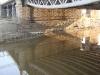 Обводный канал. Царскосельский железнодорожный мост