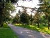 Омск. Сквер