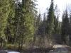Дорога к озеру Маткаселькялампи